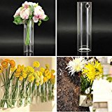 Bluelover Wall Mounted Hydroponic Plants Flower Glass Vase Home Party Decor