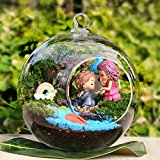 Bluelover Ball Shape Hanging Glass Vase Succulent Plants Micro Landscape Bottle