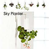 Bluelover Home Garden Decor Sky Planter Hanging Flower Pot Upside Down Plant Pot