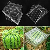 Bluelover Square Shaped Watermelon Pumpkin Shaping Mold Garden Fruit Growth Forming Mould Tool