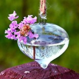 Bluelover Onion Shape Hanging Glass Vase Hydroponic Plants Container
