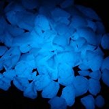 Bluelover 1000g Artificial Glowing Rubbles Garden Path Flowerpot Decor Landscape Noctilucent Stones -sky blue