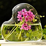 Bluelover Heart-shaped Flower Hydroponic Plants Glass Vase Home Party Decor