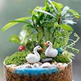 Bluelover Mini Resin White Swan Garden Micro Landscape DIY Decorations