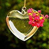 Bluelover Heart Shape Hanging Glass Vase Garden Hydroponic Plants Container